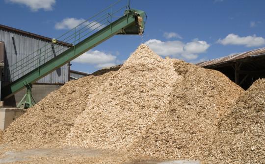 Sawmill Feasibility Study